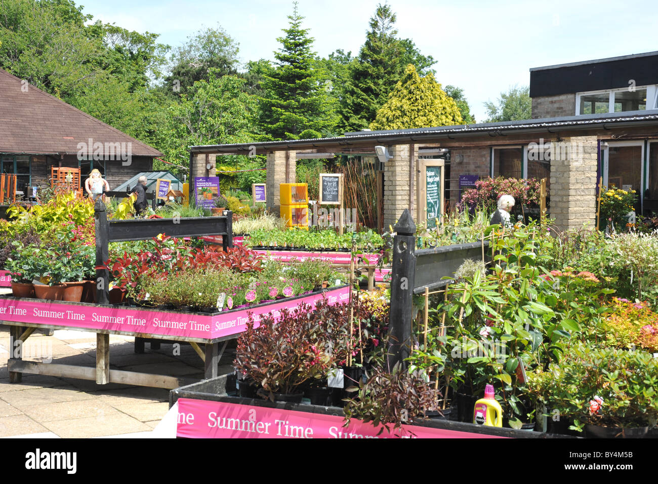 Pleasing Garden Centre  Shrubs And Bedding Plants Area  Uk Stock Photo  With Luxury Garden Centre  Shrubs And Bedding Plants Area  Uk With Adorable Alton Garden Centre Also Garden Trugs Wooden In Addition Liss Garden Machinery And Garden Open Days As Well As Victoria Gardens Central Park Additionally The Garden Of Eden Movie  From Alamycom With   Luxury Garden Centre  Shrubs And Bedding Plants Area  Uk Stock Photo  With Adorable Garden Centre  Shrubs And Bedding Plants Area  Uk And Pleasing Alton Garden Centre Also Garden Trugs Wooden In Addition Liss Garden Machinery From Alamycom