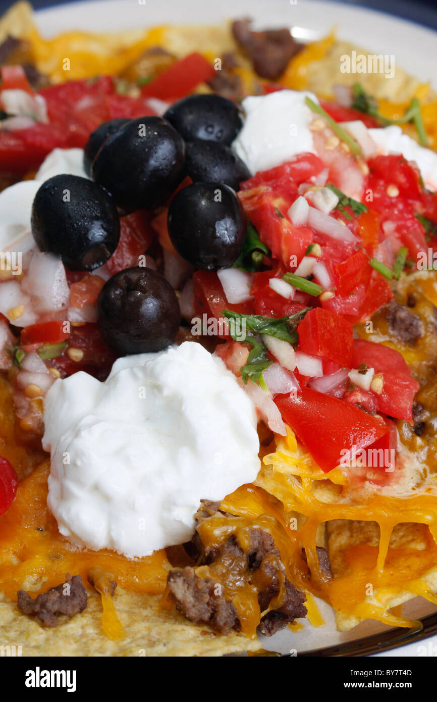nachos with all the nachos with all the fixings nachos supreme with ...