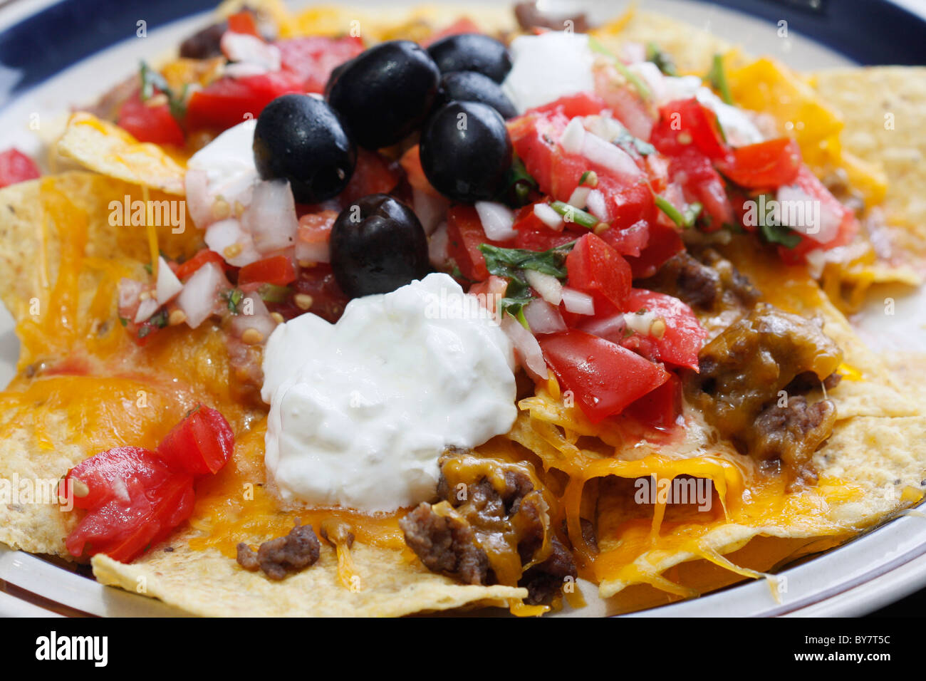 ... bbq chicken nachos of nachos with all the nachos with all the fixings