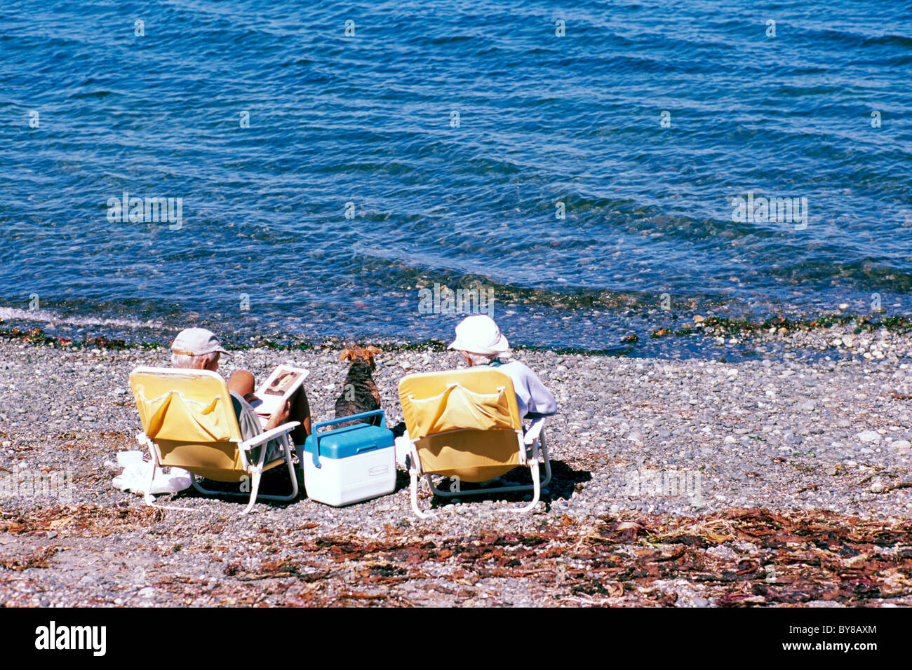 Elderly Couple With Pet Dog Sitting In Chairs And Sunbathing   Qualicum  Beach, BC, Vancouver Island, British Columbia, Canada