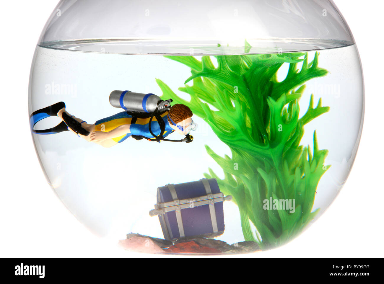 Freshwater fish bowl -  Diver And Treasure Chest In A Fish Bowl Stock Photo