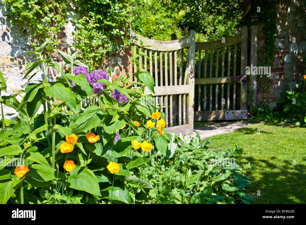 An Open Wooden Garden Gate In An English Country Garden In Summer With  Californian Poppies And