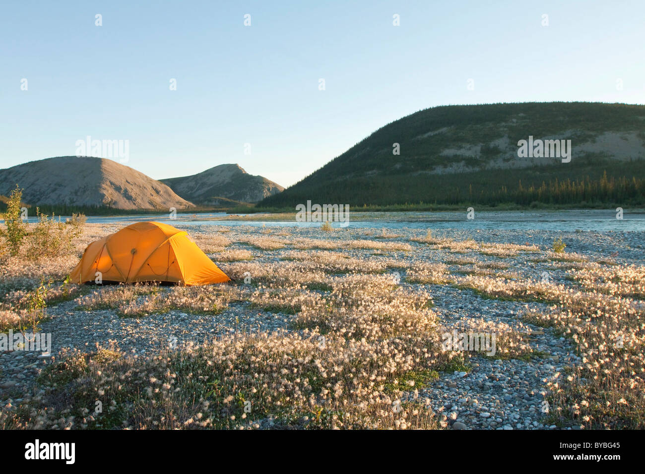 Expedition tent arctic tundra cotton grass c&ing Wind River and Mackenzie Mountains behind Yukon Territory Canada & Expedition tent arctic tundra cotton grass camping Wind River ...