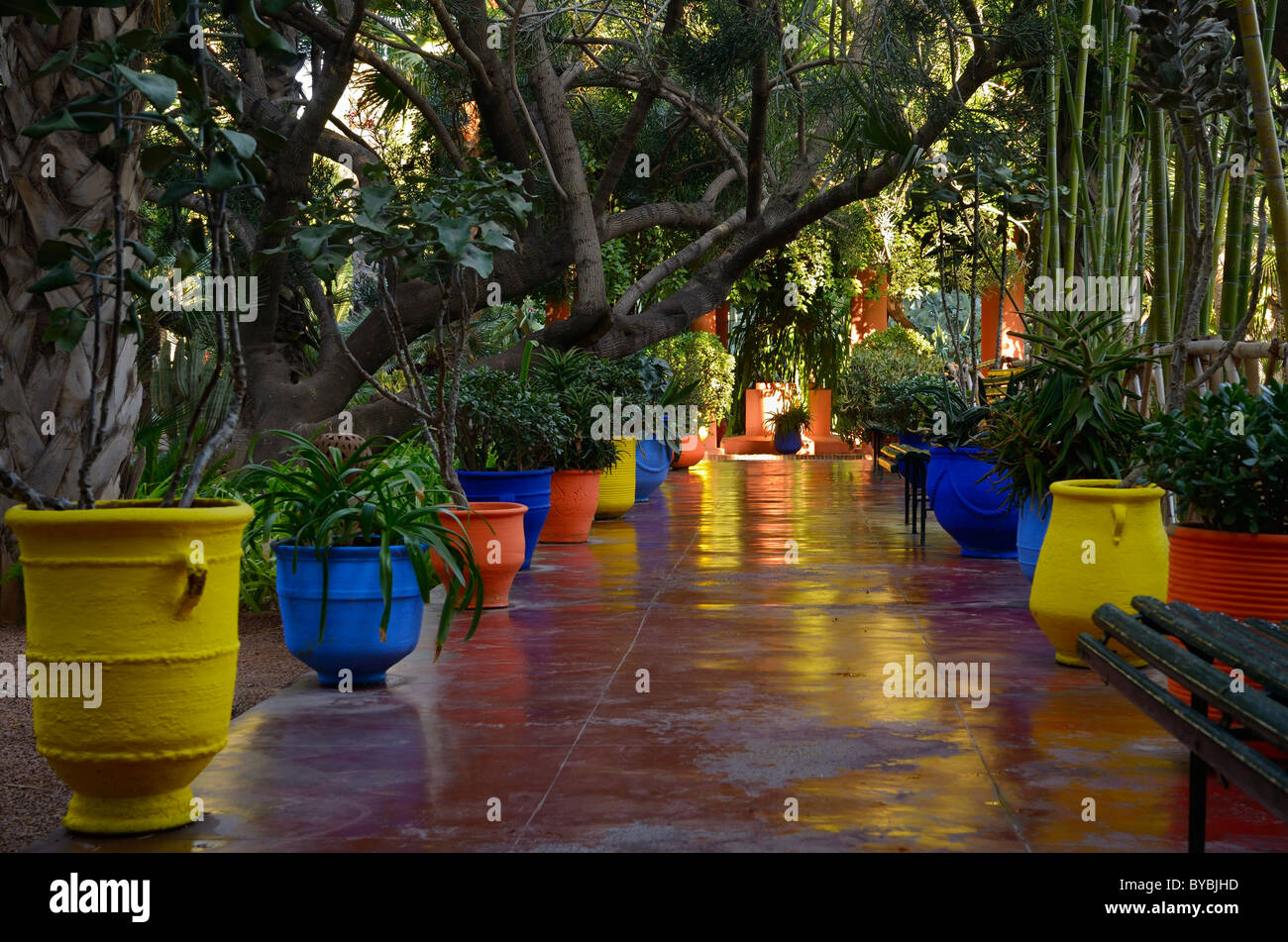 Colorful Yellow Blue And Orange Planters On A Walkway In Majorelle Garden  Marrakech Morocco   Stock