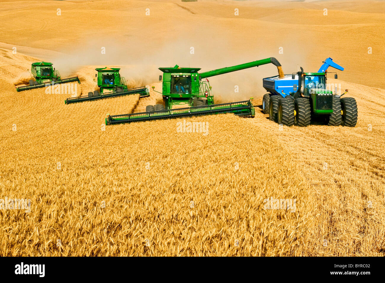 Harvesting Wheat With A Combine | www.pixshark.com ...