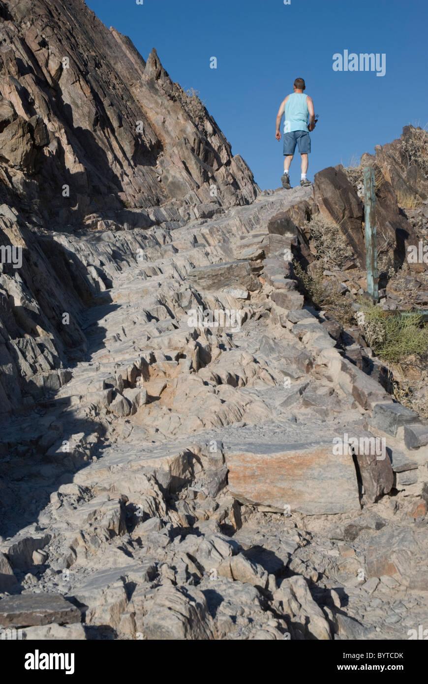 A Hiker On The Rocky Summit Trail Piestewa Peak Formerly
