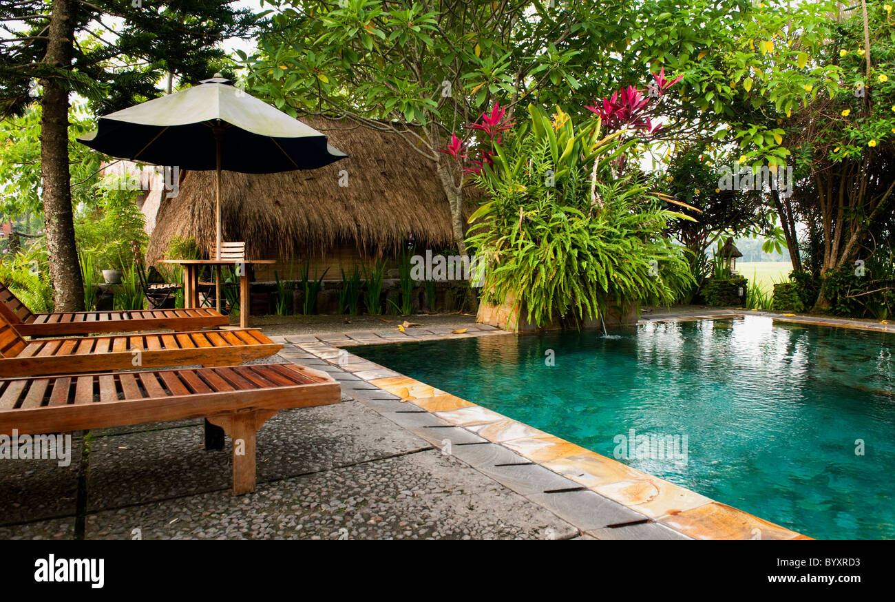 at the beautiful tegal sari hotel in ubud bali the pool provides