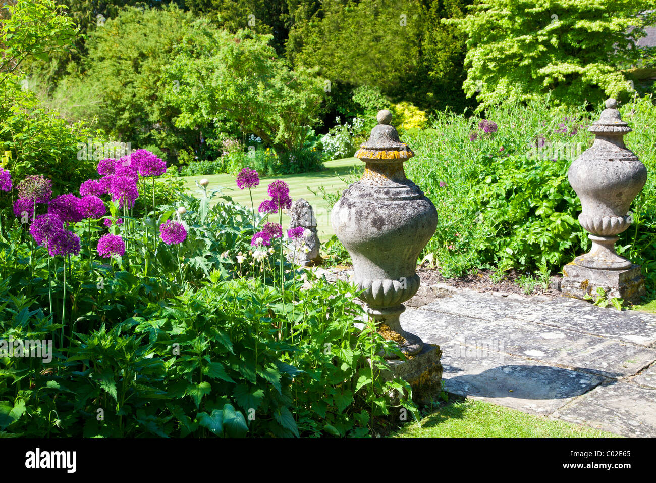 Stock Photo   Stone Garden Ornaments And Purple Allium Or Onion Flowers  Overlooking A Lawn In An English Country Garden In Summer