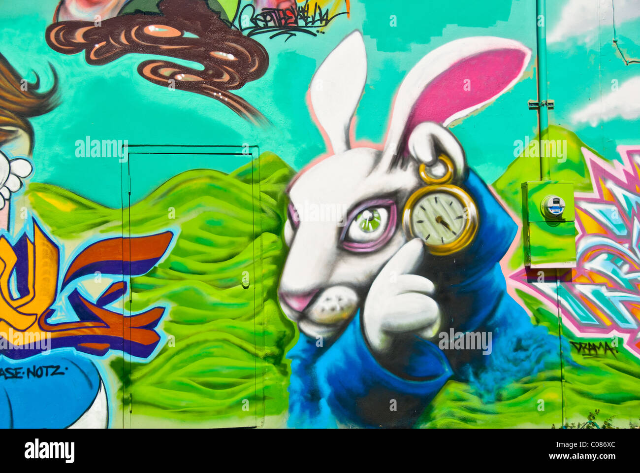 Alice in wonderland graffiti wall art mural detail in wynwood art alice in wonderland graffiti wall art mural detail in wynwood art district of miami florida usa amipublicfo Images