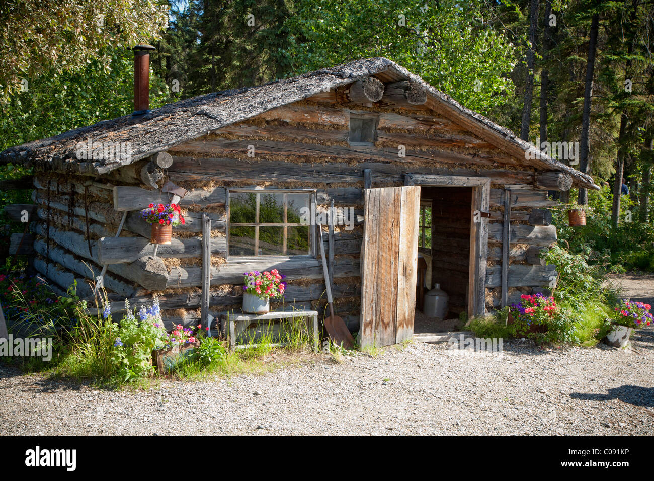 Marvelous photograph of Stock Photo Trapper's style log cabin at Chena Indian Village on the  with #495E24 color and 1300x956 pixels