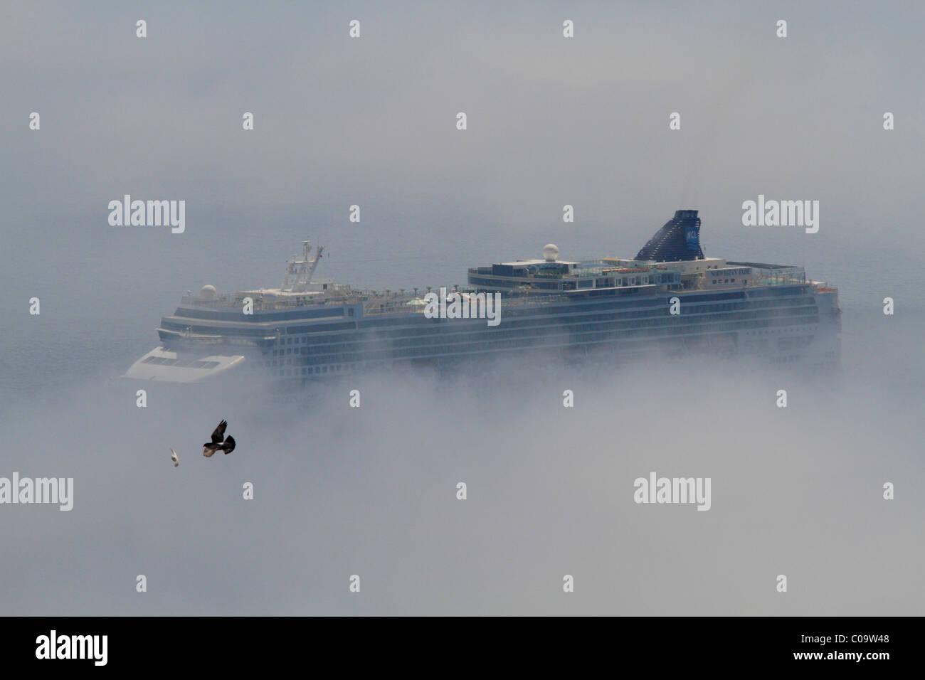 Cruise Ship Norwegian Jade In Fog In Front Of Monaco Pigeons - Flying cruise ship