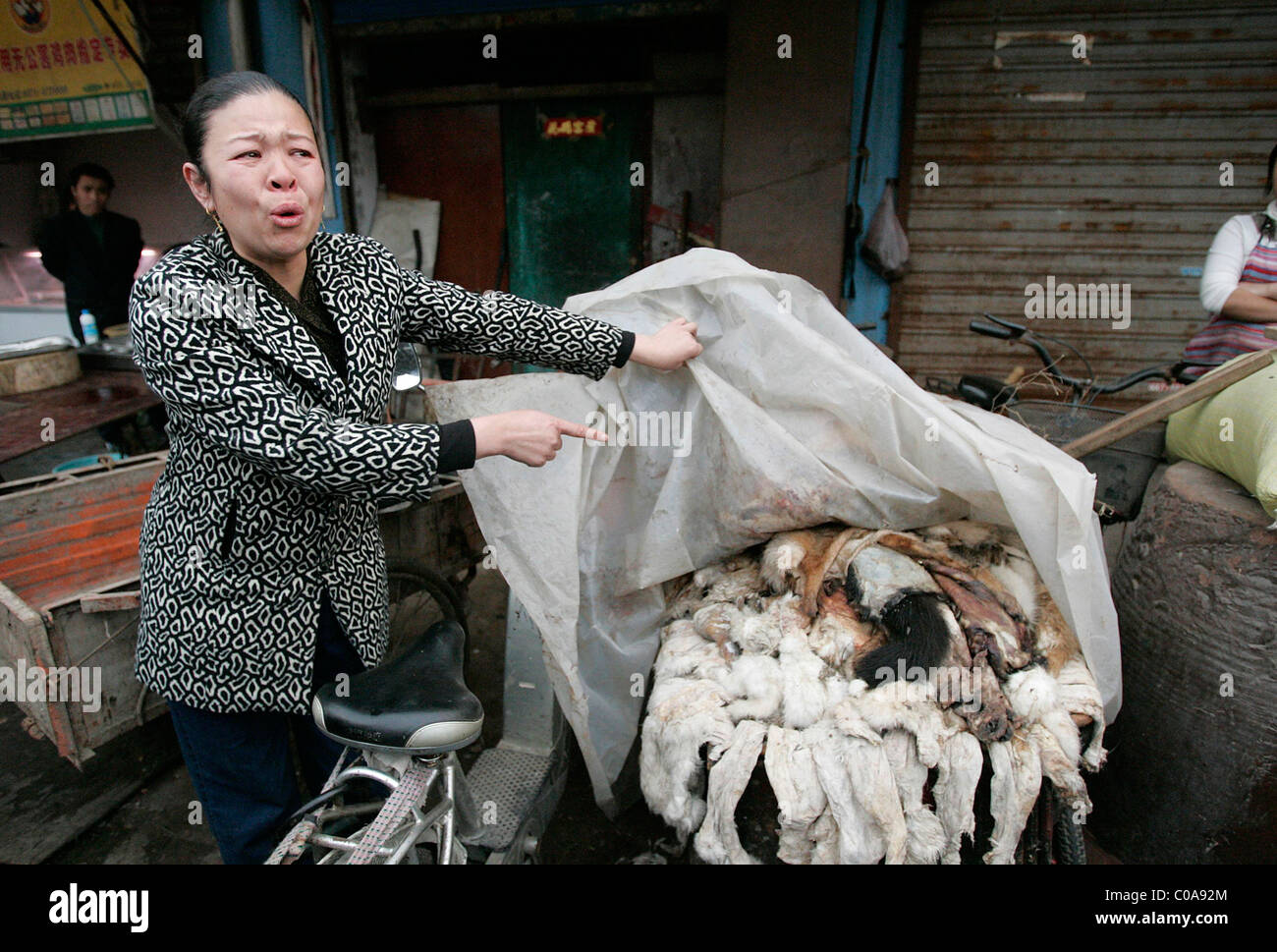 CHINA BLASTED AFTER DOG SLAUGHTER Animal-rights ... - photo#33