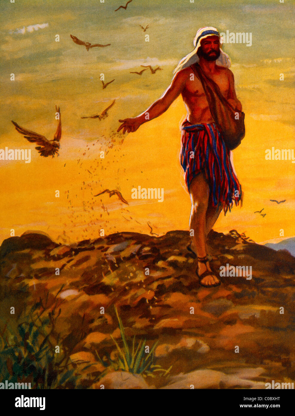 the sower stock photos u0026 the sower stock images alamy