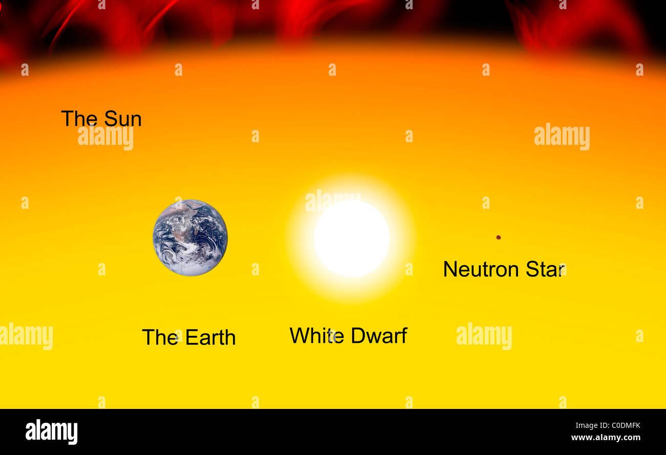 white dwarf compared to the sun -#main
