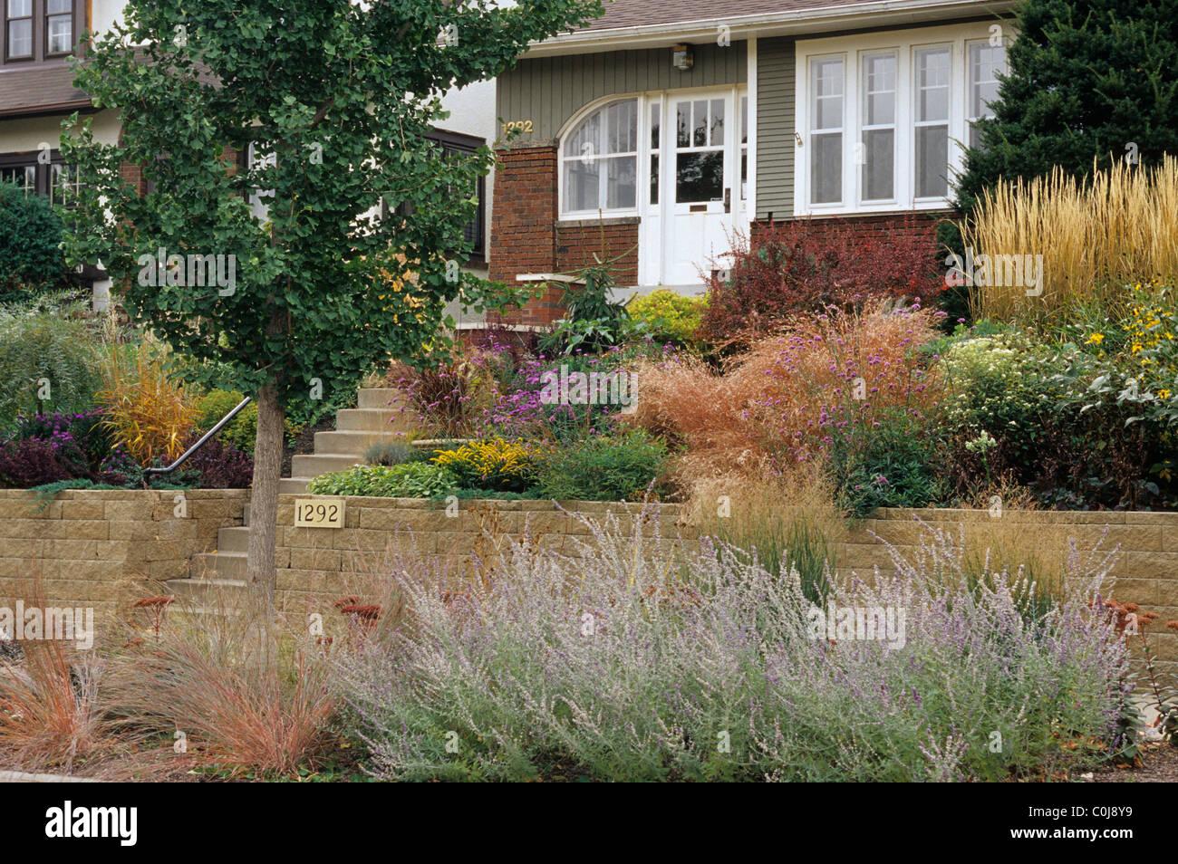 Front yard sloped garden in october includes ornamental for Ornamental grasses for front yard