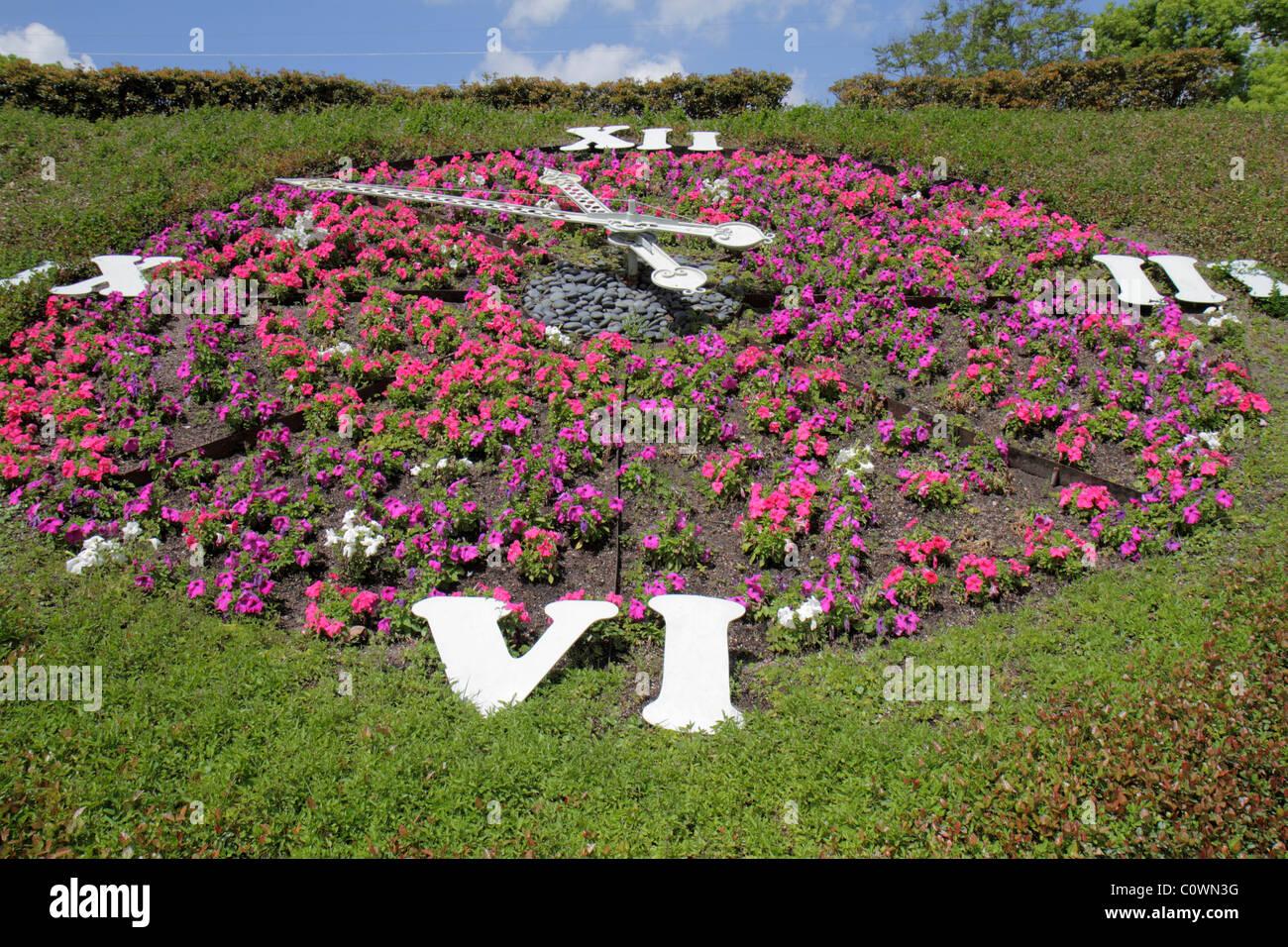 orlando florida harry p leu gardens floral clock flowers