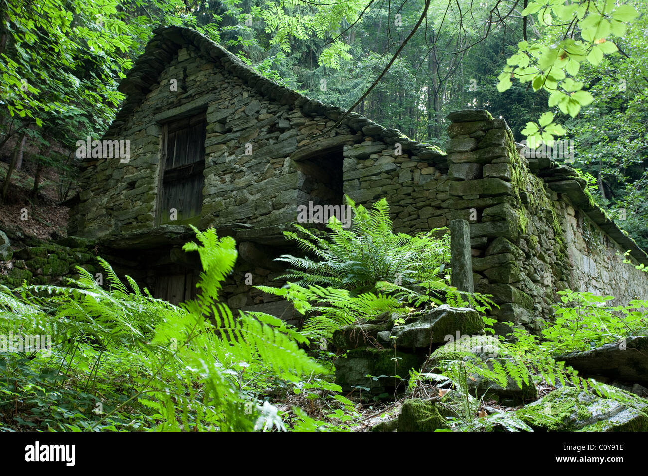 A Rustic Stone Cottage In Forest