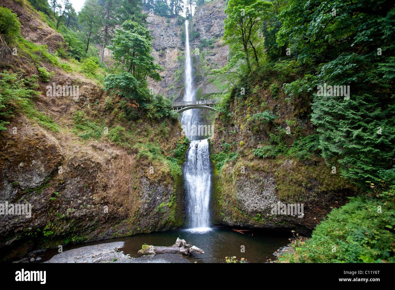multnomah falls columbia river gorge cascade range oregon usa stock photo royalty free. Black Bedroom Furniture Sets. Home Design Ideas