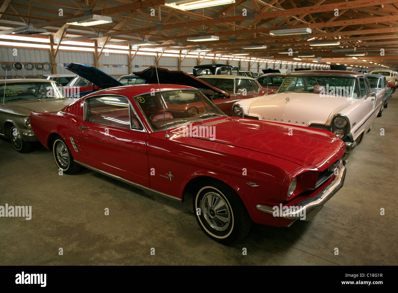 1965 v8 ford mustang gt fastback in the vintage car show country classic cars on the