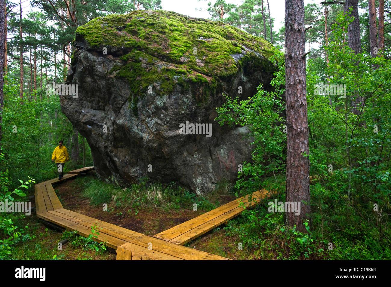 Boulder rock majakivi aabla raba jungle in lahemaa national park estonia baltic states europe