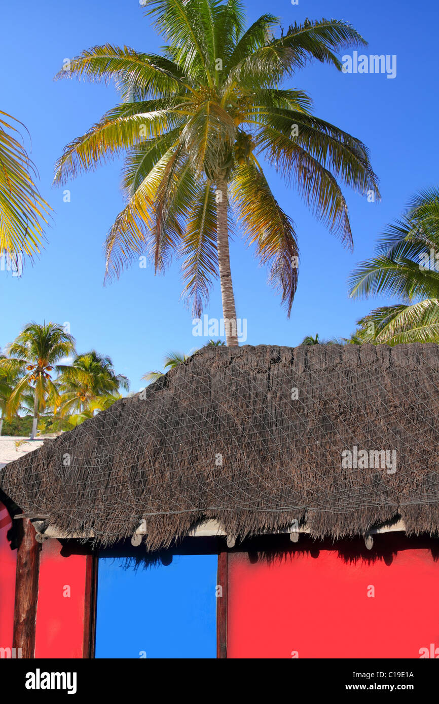 Caribbean hut red colorful house coconut palm trees for Colorful tree house