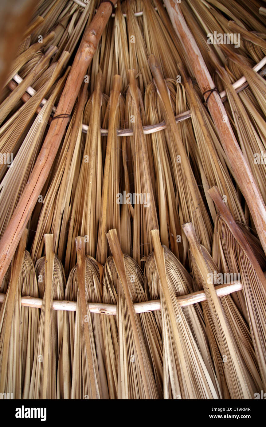 Palm Tree Leaves In Sunroof Palapa Hut Traditional Roofing In Mexico