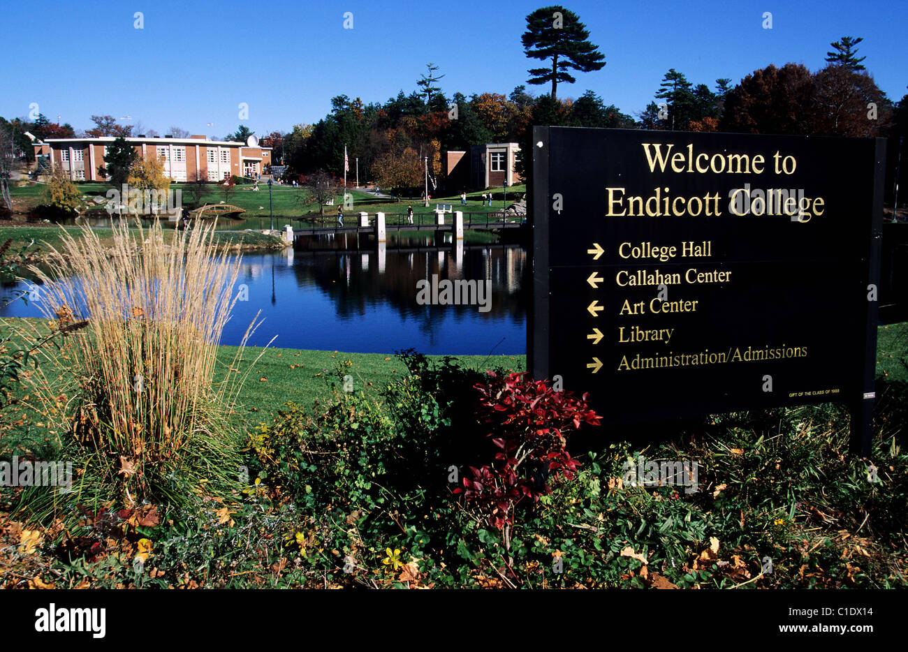 endicott college essay questions Endicott college was founded as endicott junior college in 1939 by eleanor tupper and her husband, george o bierkoe originally a two-year women's college.