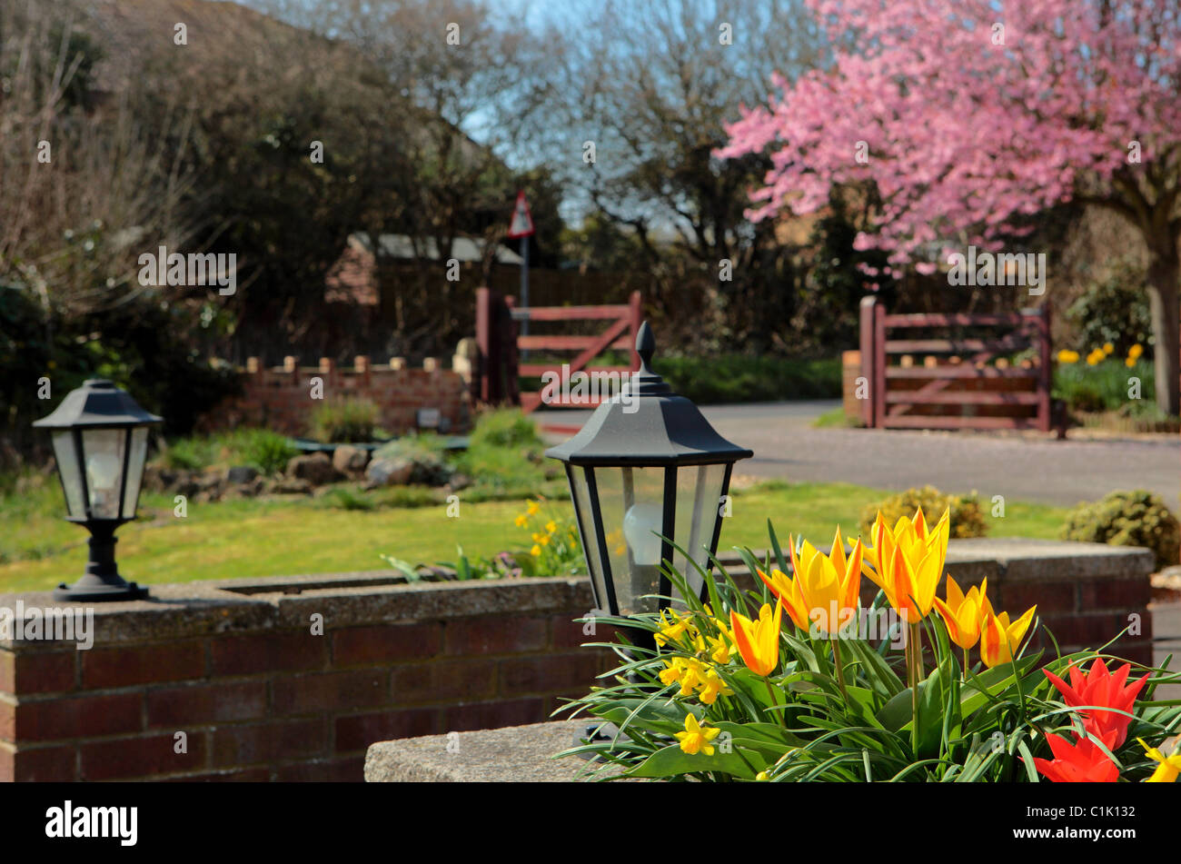 Beautiful English Flower Garden beautiful colourful english country garden in spring with pretty