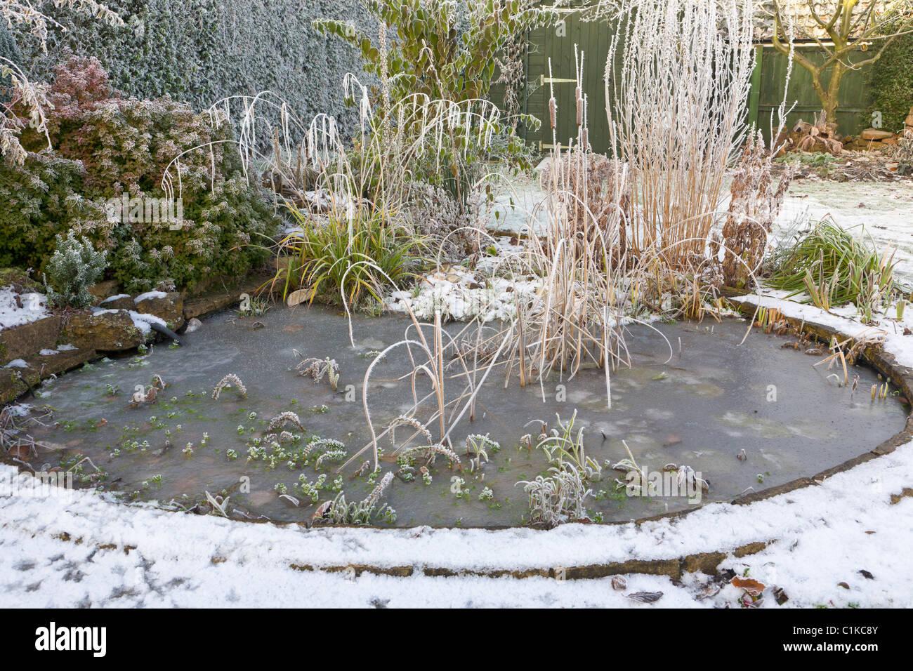 Frozen garden pond in winter stock photo royalty free for Winter garden pool