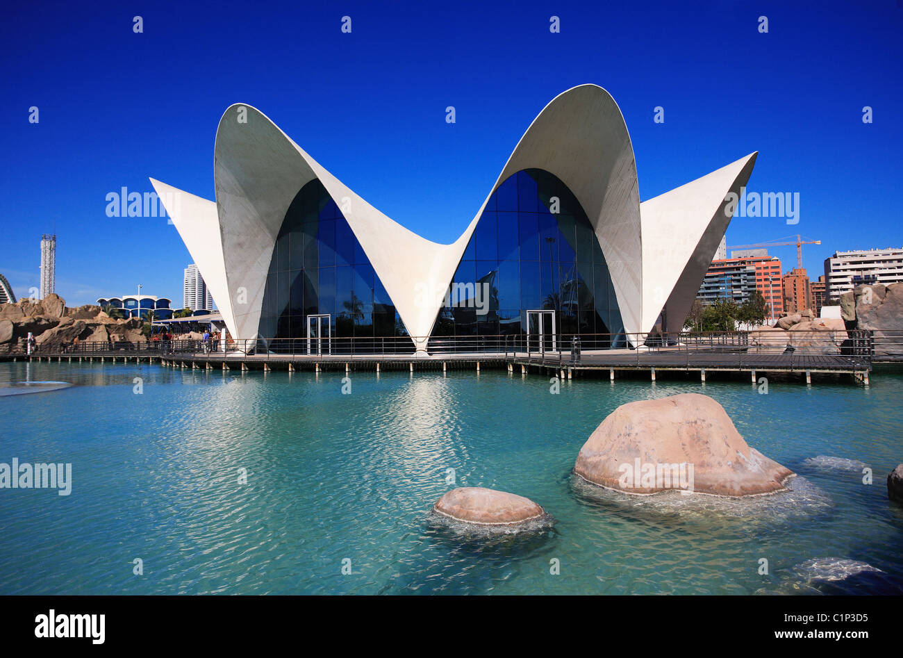 Spain, Valencia, City of Arts and Sciences by the Architect Santiago Stock Ph...
