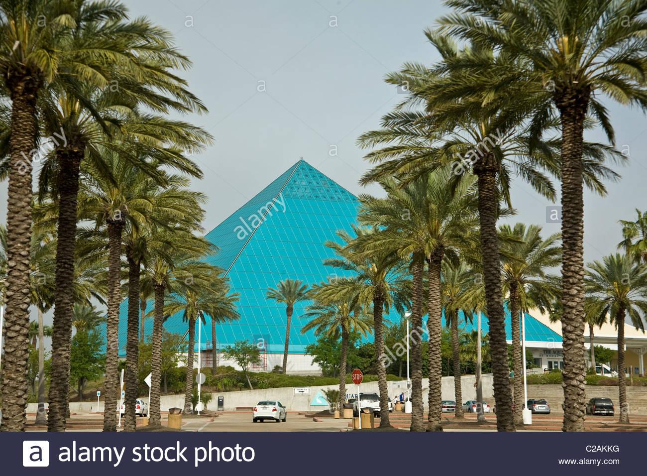 Moody Gardens Aquarium Housed In A Glass Pyramid In Galveston, Texas.    Stock Image