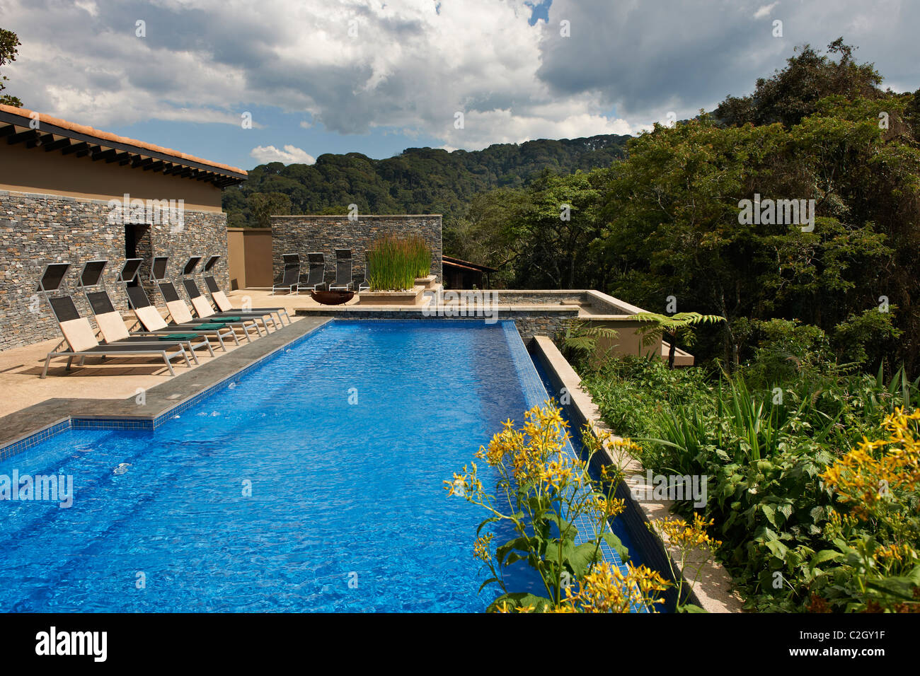 Swimming Pool In Nyungwe Forest Lodge Parc National De Nyungwe Stock Photo Royalty Free Image