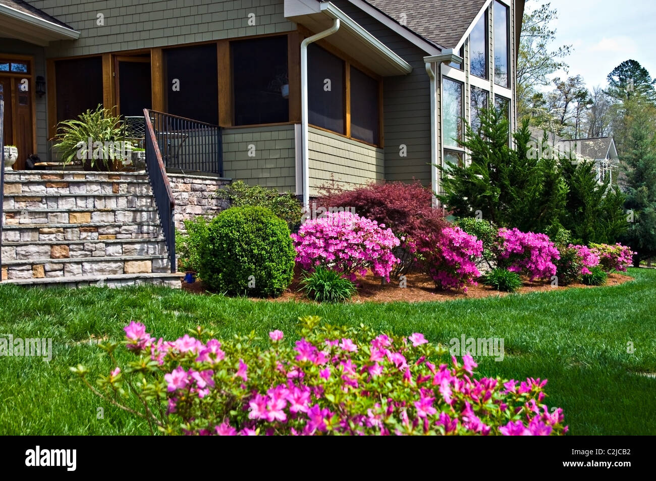 azaleas search front landscaping - 28 images - best 25 ...
