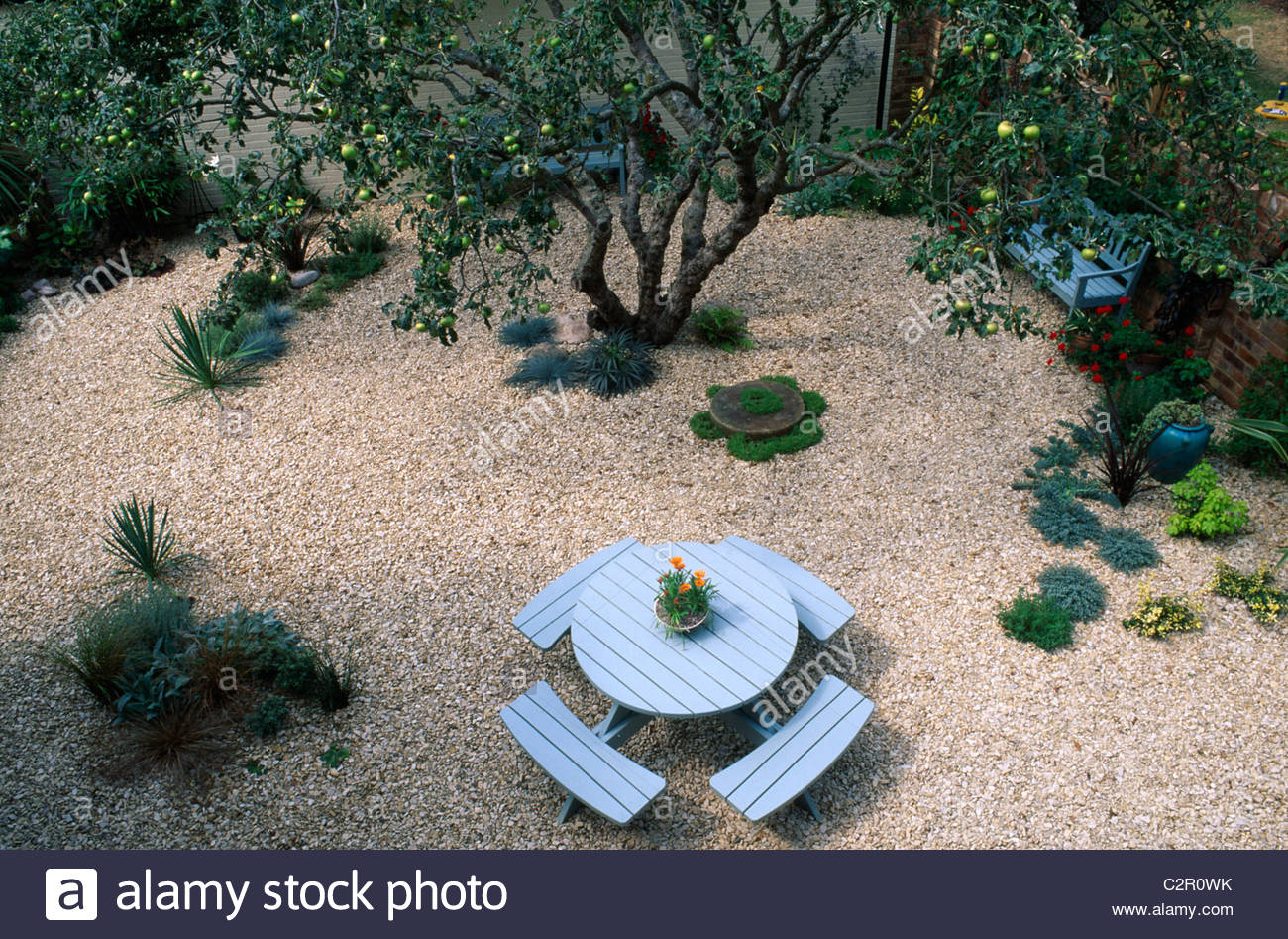 gravel garden with garden furniture and old apple tree