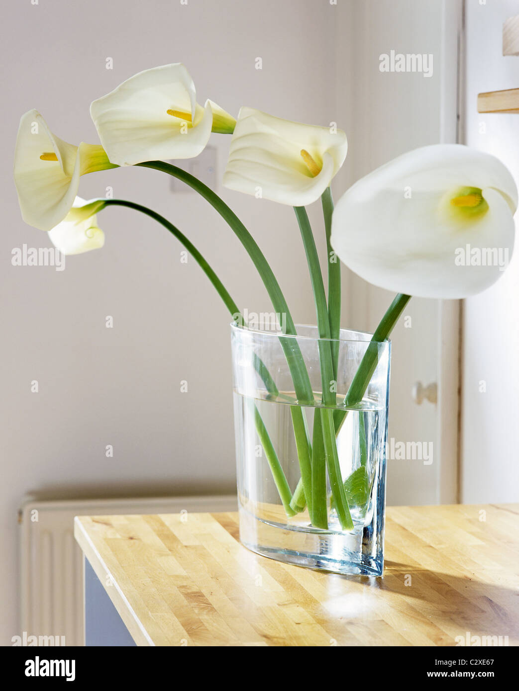 A detail of a modern sitting room showing a flower arrangement of a detail of a modern sitting room showing a flower arrangement of white arum lilies in a glass vase on wooden work surface reviewsmspy