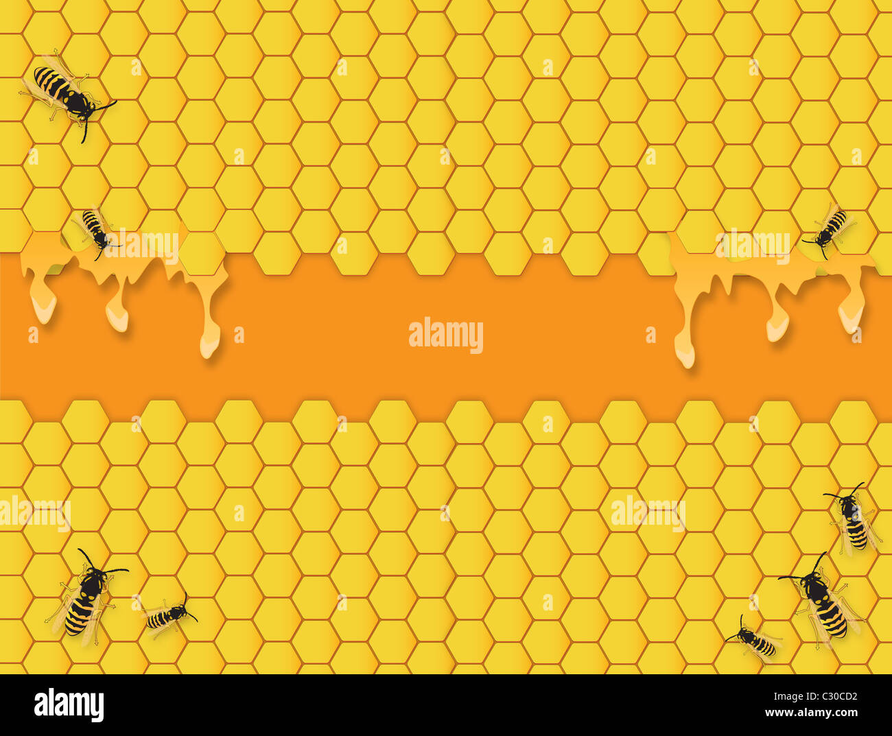 bee hive background with honey stock photo royalty free image