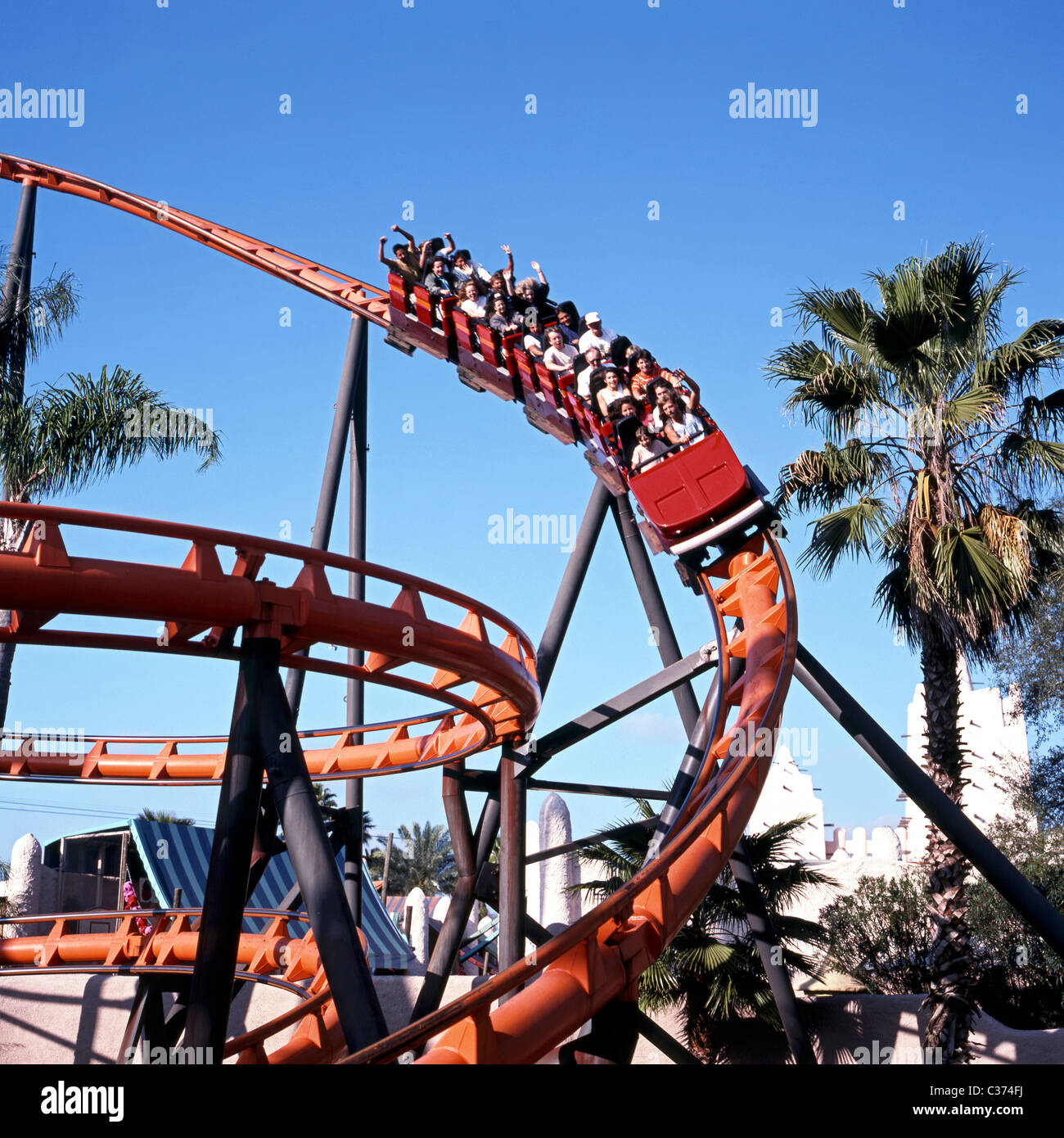 The Scorpion Roller Coaster Ride, Busch Gardens Theme Park, Tampa, Florida,  USA