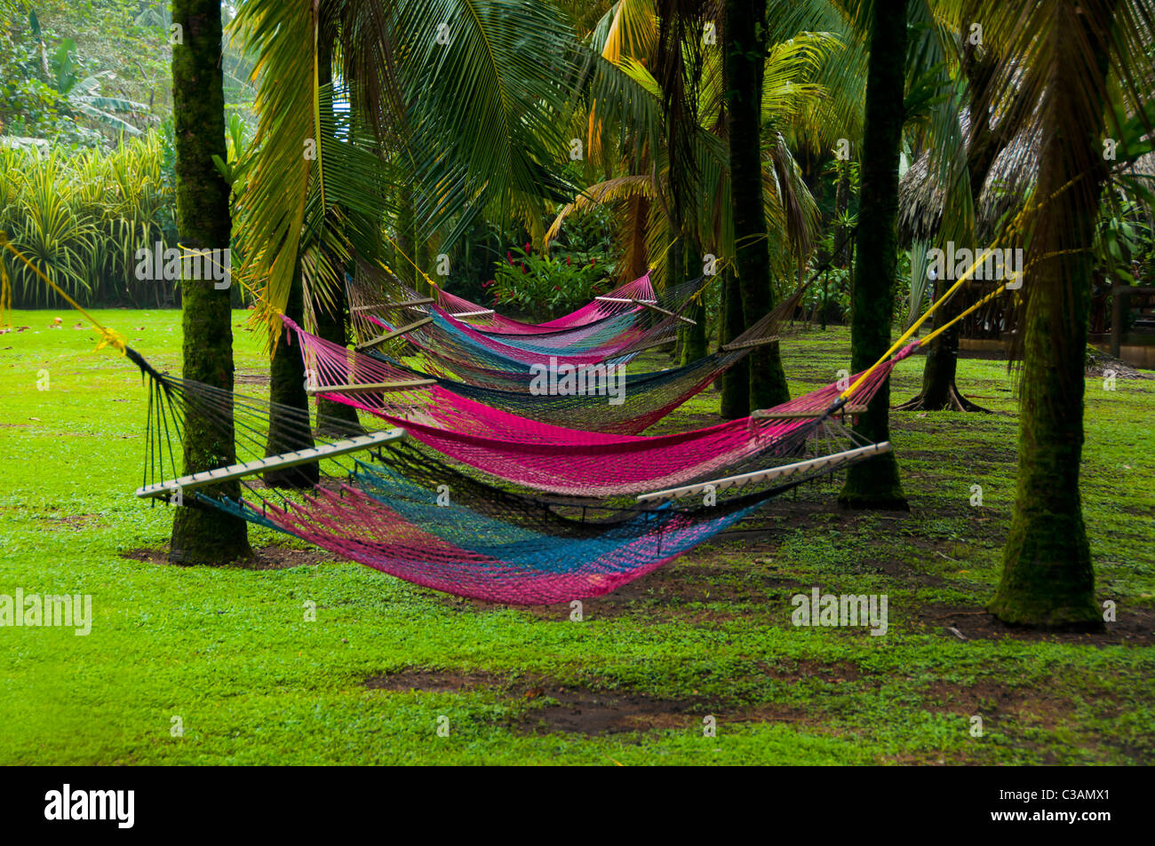 colorful hammocks in peaceful tropical garden colorful hammocks in peaceful tropical garden stock photo royalty      rh   alamy