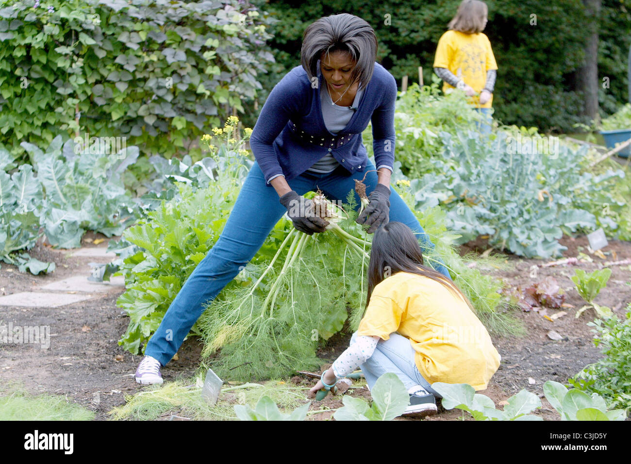 Us First Lady Michelle Obama Hosts A Fall Harvest Of The White House Stock Photo 36670199 Alamy