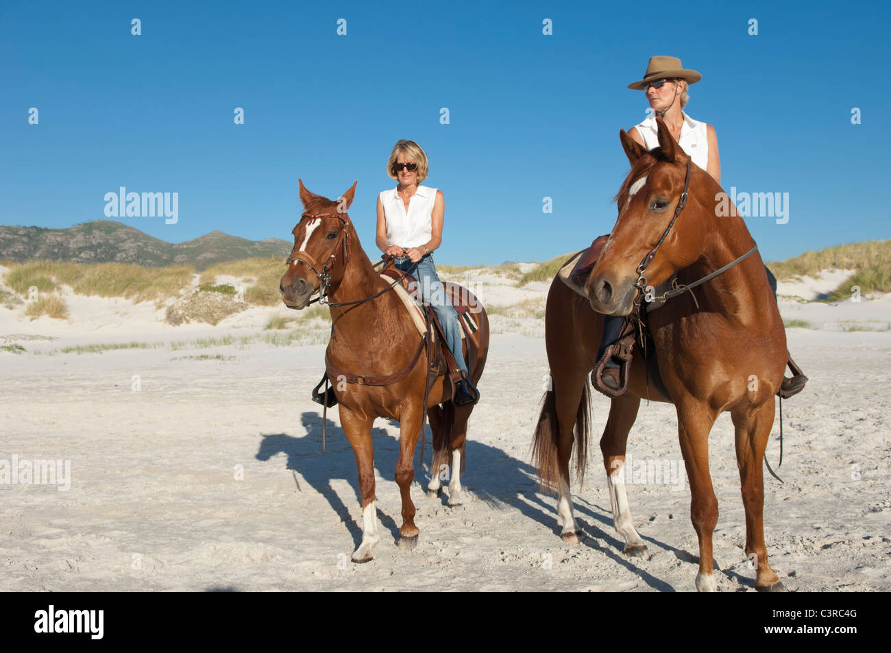 2 people riding horses on the beach stock photo royalty free 2 people riding horses on the beach sciox Choice Image