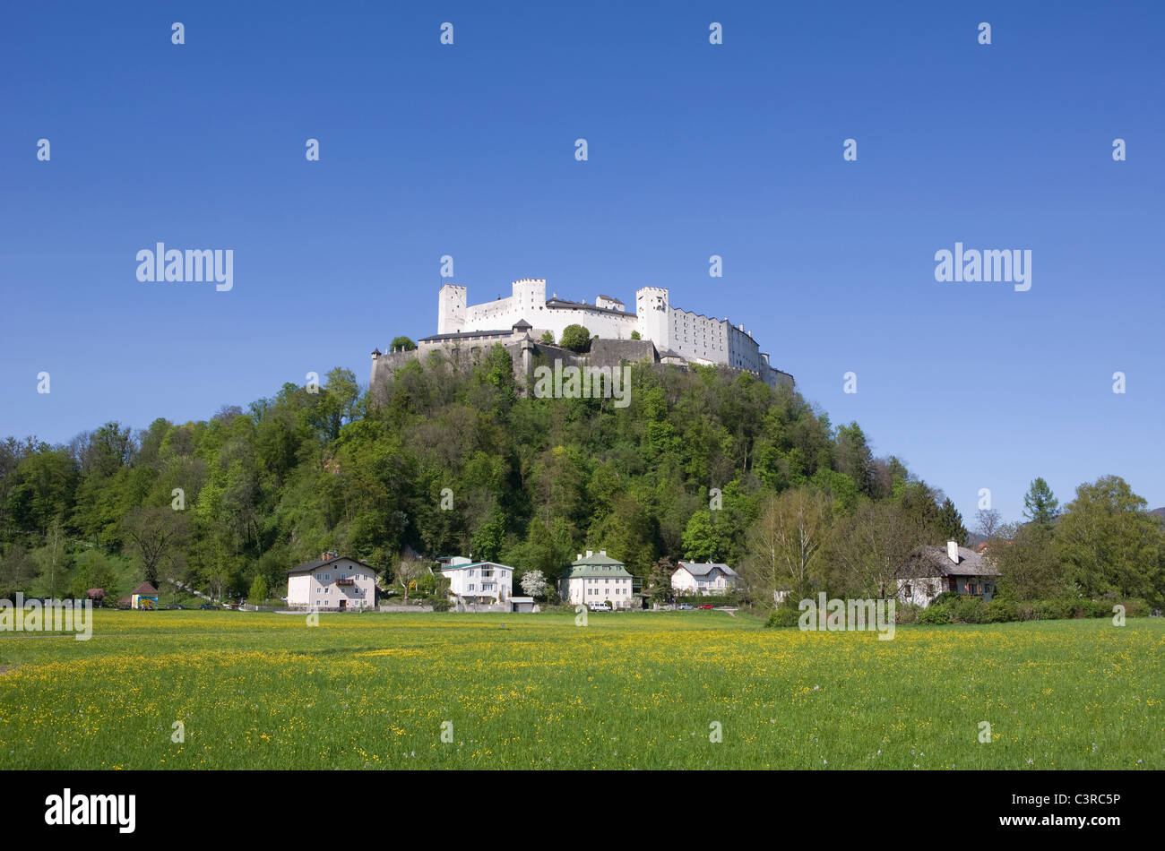 Hohensalzburg View