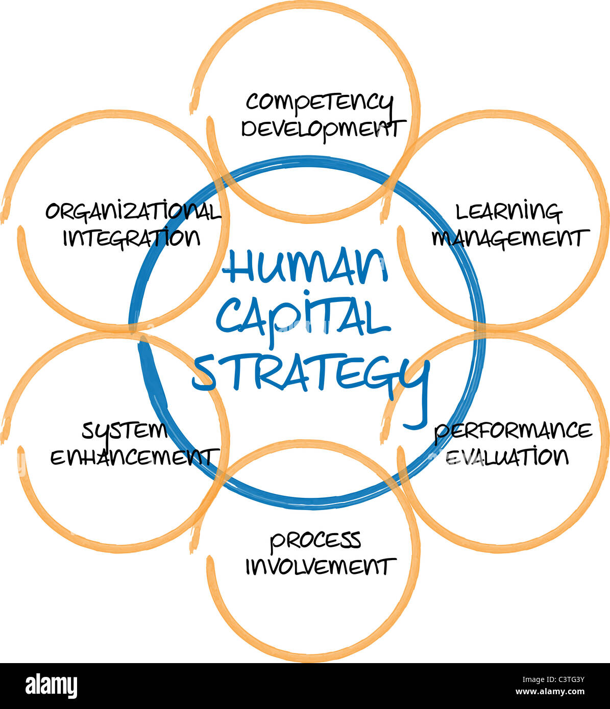 managing the human capital commerce essay Unit of study descriptions - management  this unit draws on concepts from industrial relations and human resource  managing organisational.