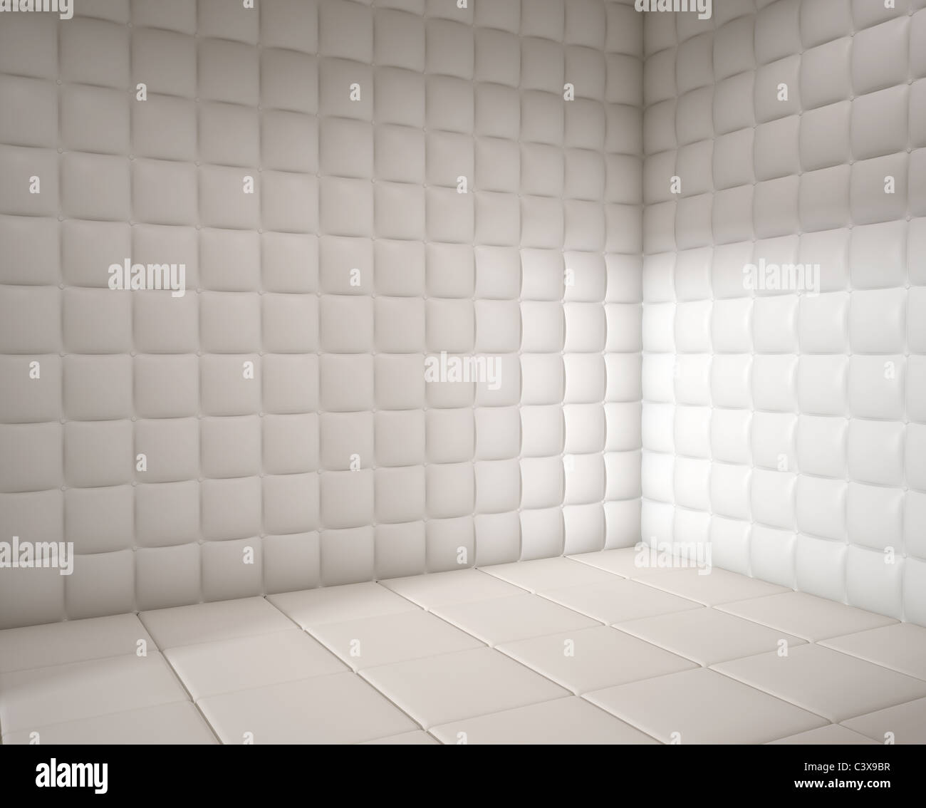 Padded Rooms In Mental Hospitals