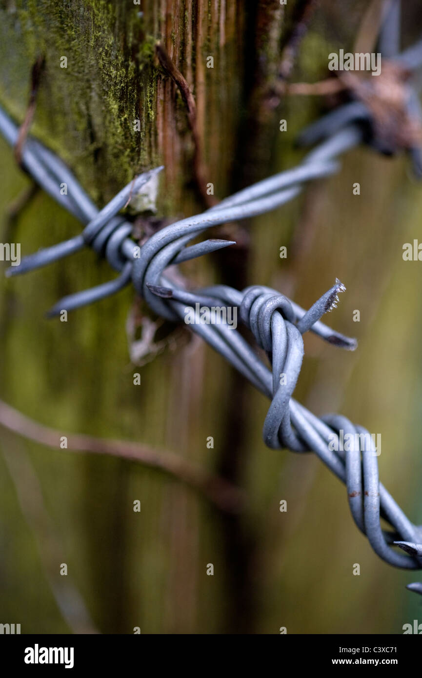 Barb Wire Wrapping | New Wiring Diagram 2018