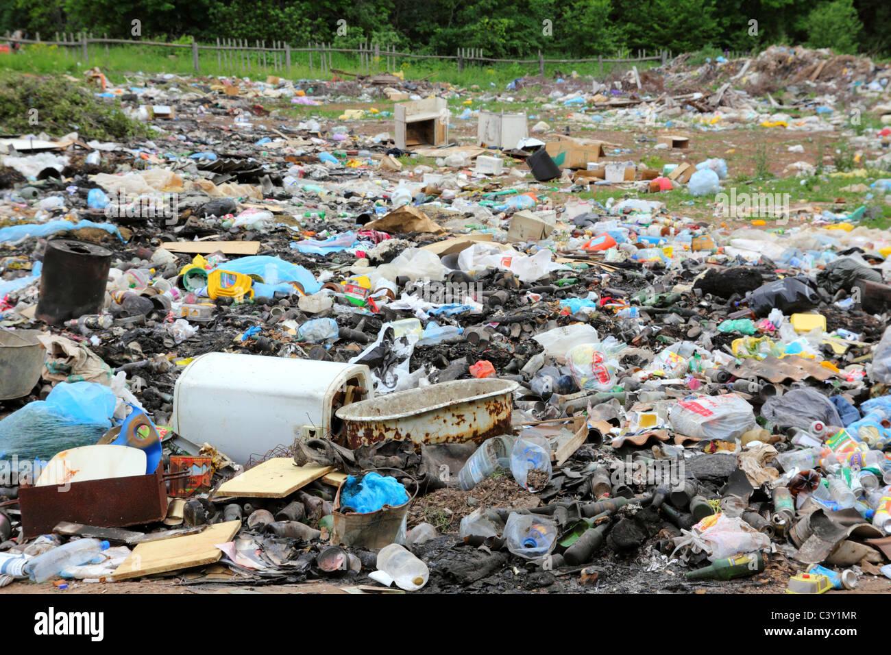 Global environment essay