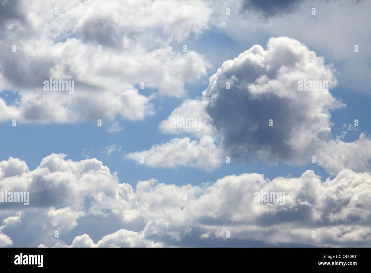 rain clouds in a blue sky the heavy cumulus clouds are laden with stock photo royalty free. Black Bedroom Furniture Sets. Home Design Ideas