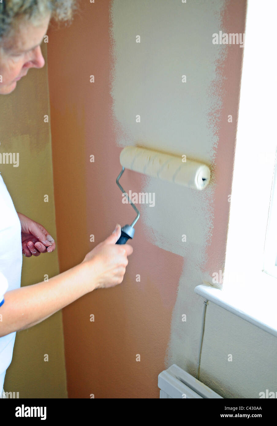 Woman middle aged decorating a wall with emulsion paint using a stock photo woman middle aged decorating a wall with emulsion paint using a roller amipublicfo Choice Image