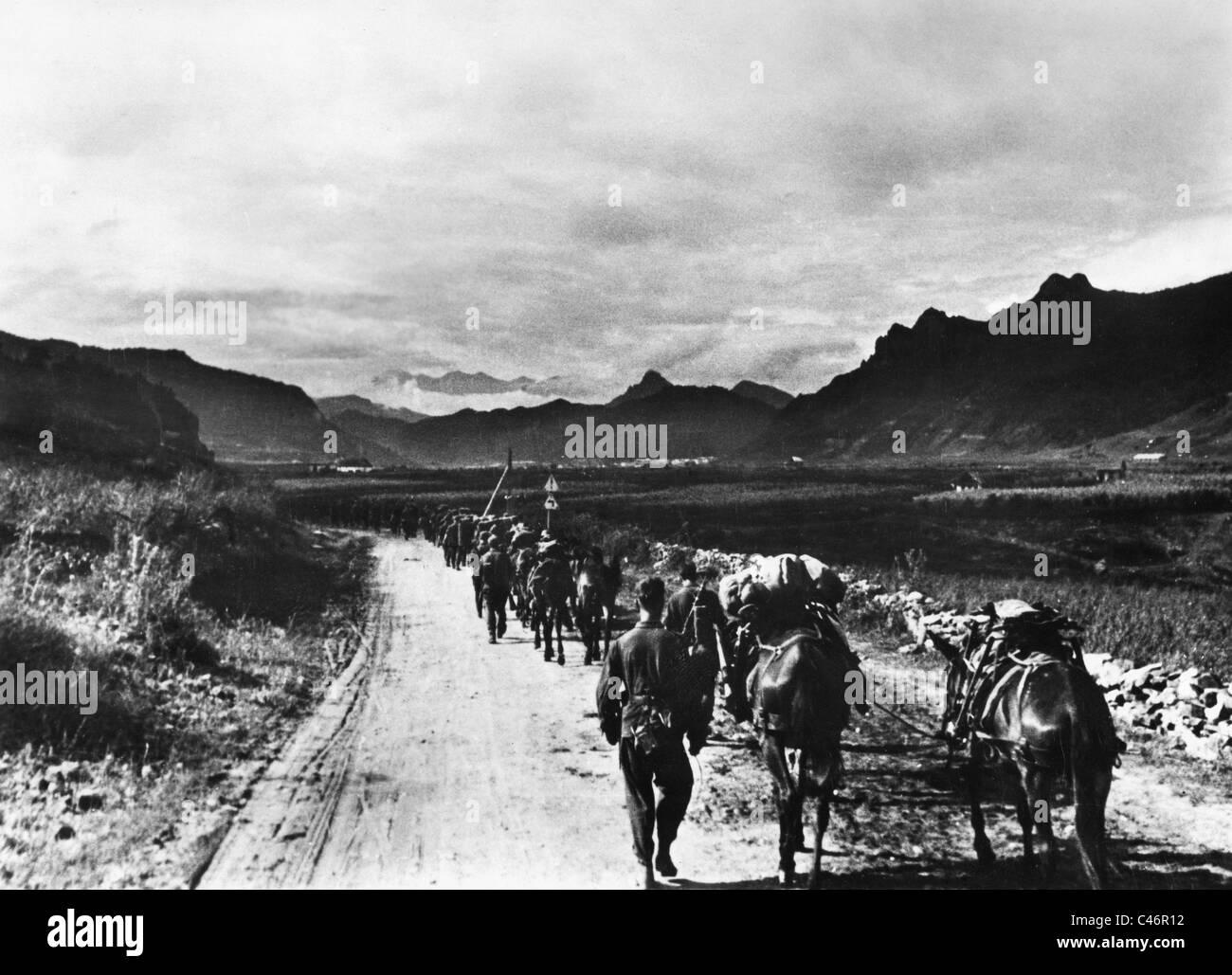 Краснодар 1942 1943 скачать