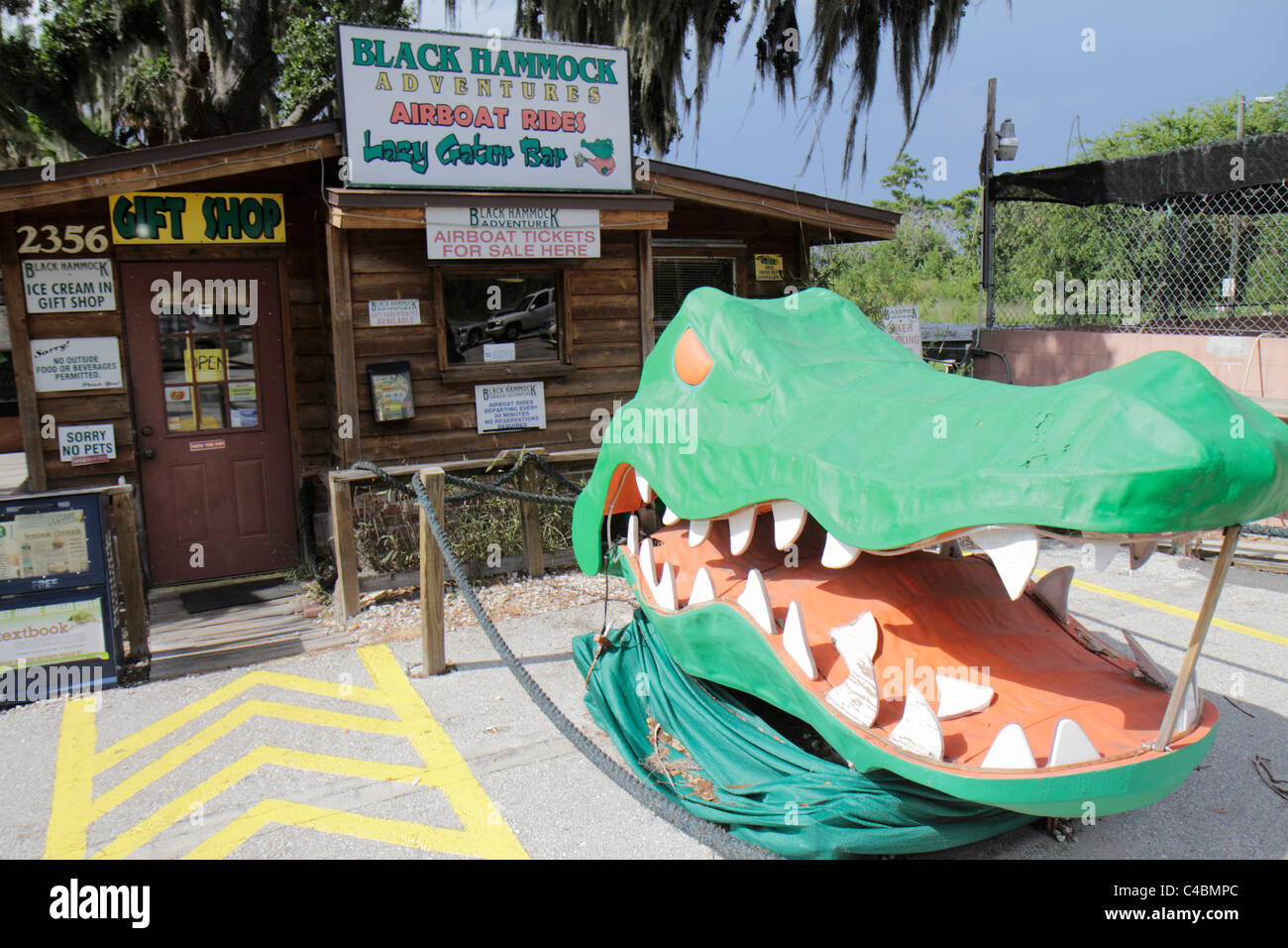 Medium image of orlando florida oviedo lake jesup black hammock adventures gift shop giant alligator head sculpture