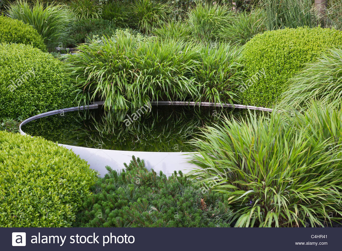 Exceptional Topiary Box Part - 8: A Green Garden With Grasses, Clipped Box Topiary Mounds And Pool - Stock  Image
